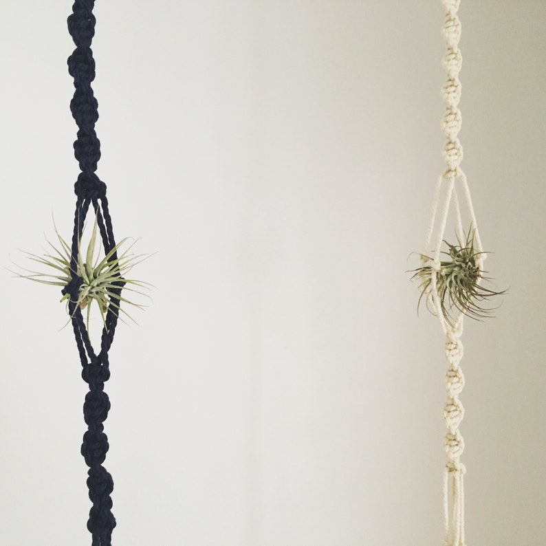 Free Shipping Macrame Air Plant Holder Air Plant Hanger Etsy