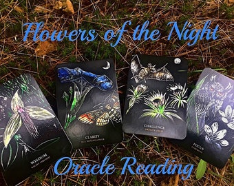 Flowers of the Night Oracle Reading