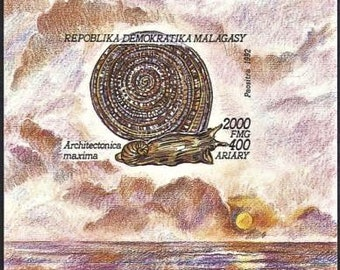 1992 Madagascar souvenir sheet postage stamp MNH giant sea snail ocean marine life