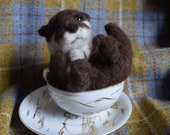 A wee otter in a teacup, ...