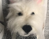 Westie, West Highland Ter...
