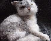 Cat portrait, needle felted cat portrait