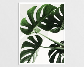 Monstera Leaf Print, Tropical Poster, Monstera Printable, Monstera Deliciosa Poster, Tropical Leaf Print, Modern Wall Print, Home Decor