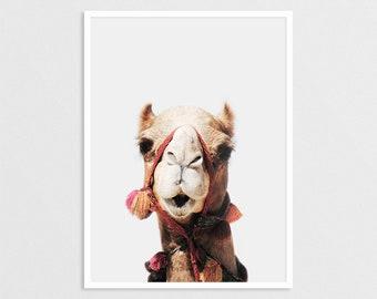 Camel Print, Peekaboo, Animal Wall Art, Alpaca Poster, Kids Room Decor, Camel Photography, Nursery Printable, Desert Animal,Digital Download