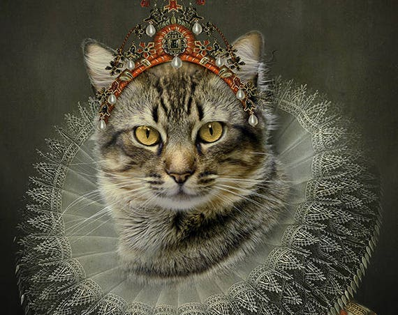 Aristocrat cat, Cat lover, Royal pet portrait, Renaissance pet portraits, Regal cat, Medieval pet portrait, Custom pet portrait by janovelty