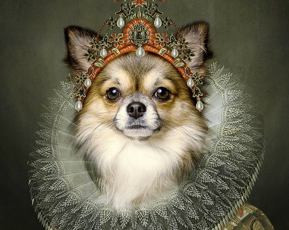 Queen Custom Pet Portrait,  Royal Pet, Pet portrait, Dog wall art, Regal pet portraits, Funny gift, Dog Portrait, Medieval pet by JAnovelty