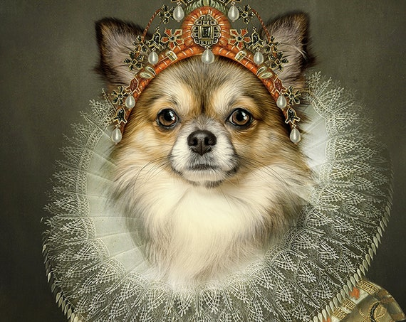 Your dog as Queen Isabela of Spain, Digital Custom Pet Portrait from photo, Medieval Wall Art - Etsy Design Awards entry
