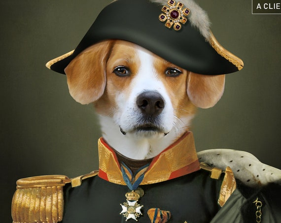 Your pet in Military Uniform | Custom pet portrait | Unisex | Army Historical Costume | Personalized Gift