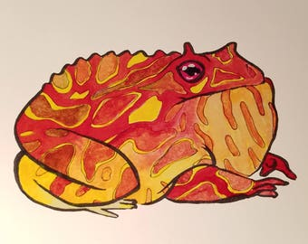 Chunky Orange Frog Waits; A Print of an Original Painting