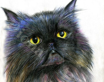 Pet Portrait|Custom Cat Portrait|Custom Cat Painting|Gift| Personalized pet portrait| Draw me|  Cat Illustration| Gift for Pet Lover| Black