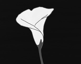 Art print of digital painting - Black and white calla lillies, single white calla lily, calla lily bouquet painting