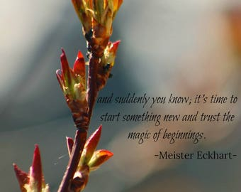 Beginnings quote from Meister Eckhart.  Beautiful instant download photography and wall art.