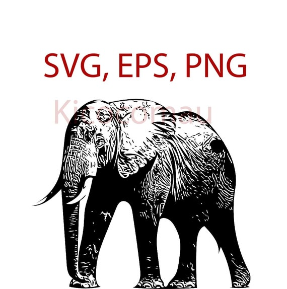 Vecteur déléphant SVG EPS PNG   Etsy c36eb9f2c3f