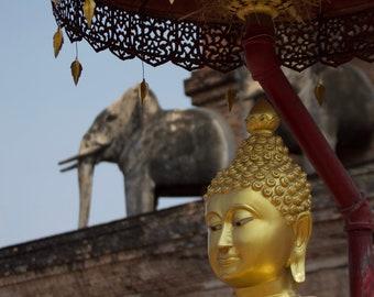 Buddha Head Wall Art Metal Prints — Wat Chedi Luang Chiang Mai Thailand — metal wall art, metal photo prints, metal photos, Buddha pictures
