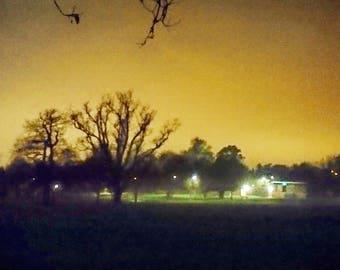 Dark night in the Park