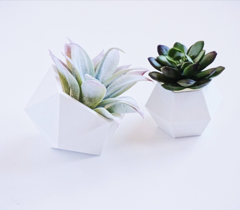 Set of Two Geometric Planters  3D Printed  Air Plant Pot  Succulents  Indoor Plants  Home Decor  Gifts
