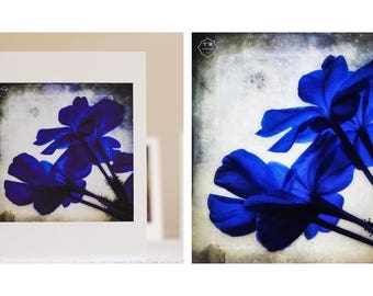 Blue Flower greeting card