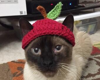 Handmade Crochet Apple Hat for Cats