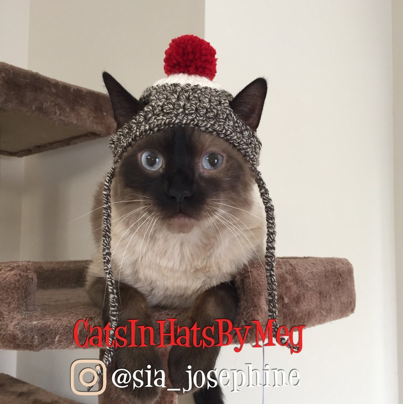 Sock Monkey Hat for Cats image 0