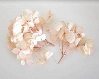 Hydrangea - Head - Pale Pink - Stabilized Flowers - Bulk