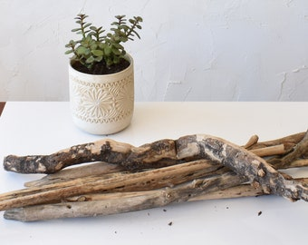Floating wood - 5-wood lot - Dried branches - 60-90 cm - Bulk