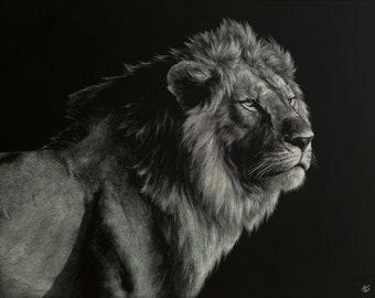 Lion Art Print   Wildlife   Scratchboard Fine Art Print   Wildlife & African Decor