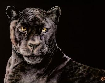 Black Leopard Art Print   Scratchboard Fine Art Print   Wildlife Decor