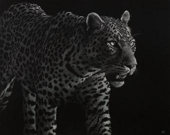 Leopard Art Print   Scratchboard Fine Art Print   Wildlife & African Decor