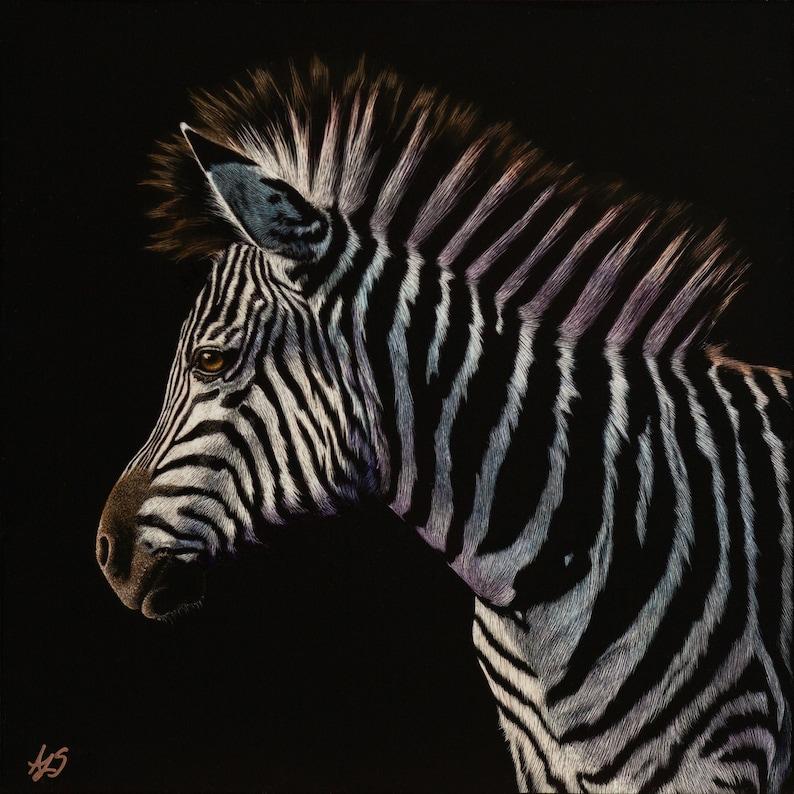 Colorful Zebra Art Print  Scratchboard Fine Art Print  image 0