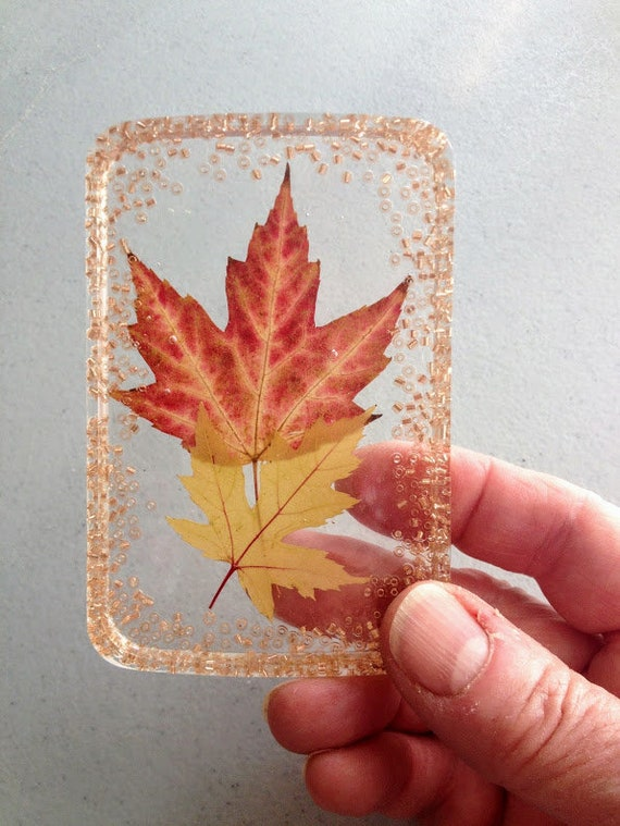 Pressed Maple Leaf Paperweight Suncatcher With Real Maple Etsy