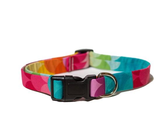 Arc en ciel collier de chien - soleil sur une journée nuageuse - mignon chien accessoires pour animaux de compagnie tissu chien chiens colorés lumineux chien cadeau chien de vêtements