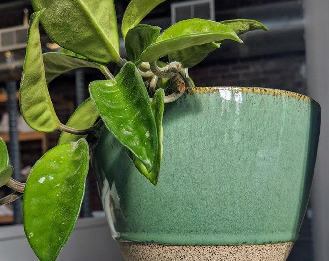 Featured listing image: Speckled Robin's Egg Hanging Planter