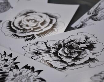 Lisianthus (10 floral postcards)