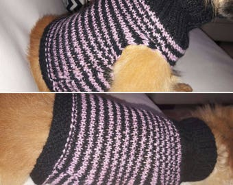Handknitted CARDI for dog