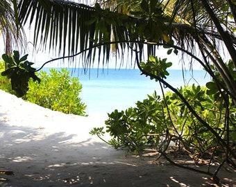 Beach Landscape - Peeking the sea