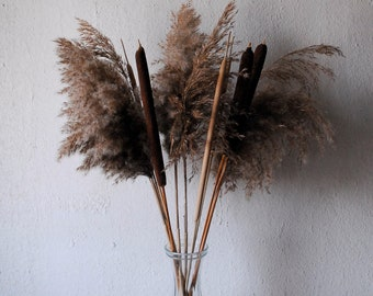 Dried flowers 'Grasses & Reed Cobs'