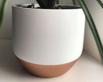 Cute Copper Trim Plant Pot