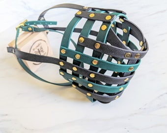 Biothane Basket Dog Muzzle open nose with forehead strap - Adjustable - Extra Small to Extra Large - Handmade - Scavenger - Level Two