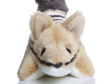 W-Wilf Numbat - Soft Toy