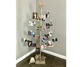 Photo Display - The Birch Branch Card & Photo Tree Value Pack