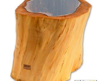 TRUNKUS3-Handmade wooden trunk table