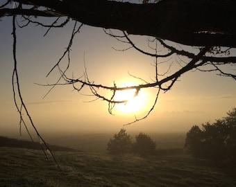 Nature - Photography - Sun - Sunrise - Landscape - New Zealand