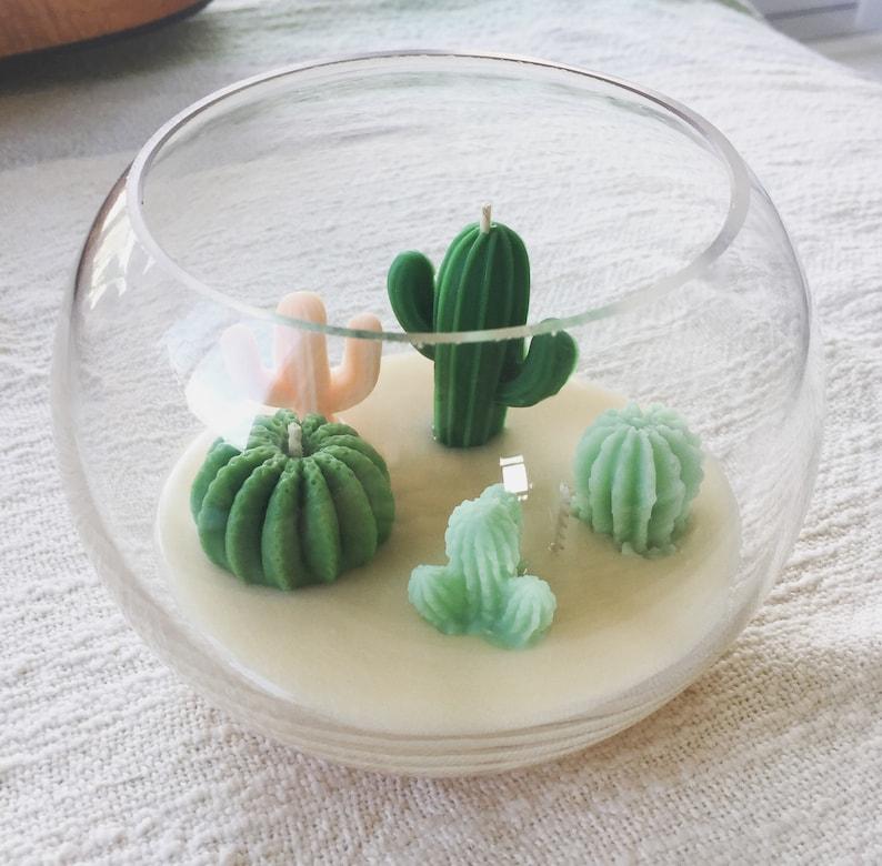 Cactus Terrarium Candle Etsy