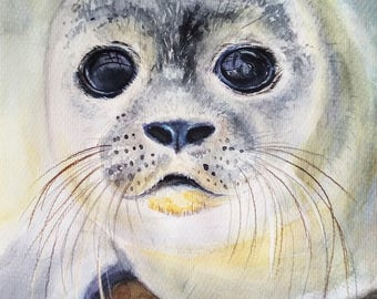 Seal. Print. Watercolor illustration. Portrait of a cute fluffy seal cub. Realistic painting. Picture for wall decoration. BolotovaTatyana