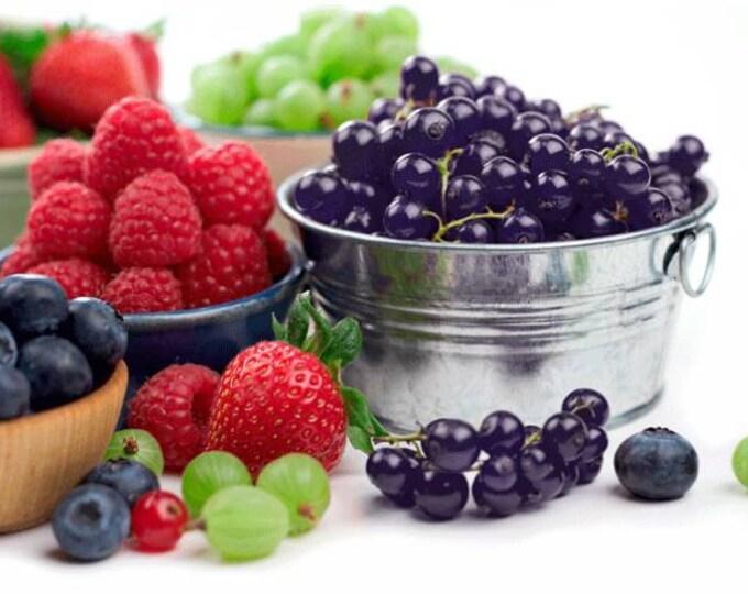 Vegan Organic Real Fruit Flavored Lip Balm