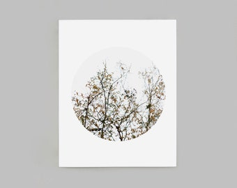 Autumn Branches Circle Cropped Wall Art, 13x16