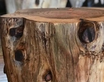 Natural Tree Stump Coffee Table