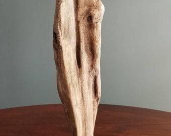 """Driftwood Sculpture """"Cinch"""""""