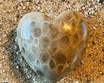 Petoskey Stone Heart Cabochon