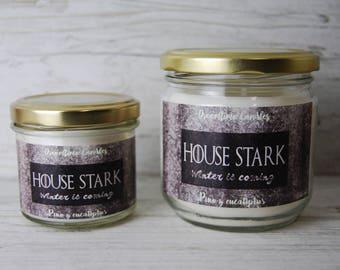 House Stark Candle 10.6 oz (314 ml) or 4.4 oz (130 ml)